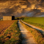 Road in the field. Photo by German photographer Veronika Pinke