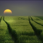 Photo art by German photographer Veronika Pinke