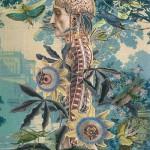 Symbolical Anatomy of flowers and birds by Argentinian born artist Juan Gatti