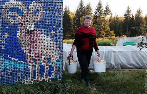 Pensioner Olga Kostina carries mushrooms, September 10, 2012