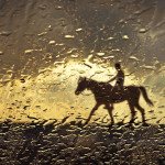 Rain drops and a horse rider. Photographer Hermin Abramovitch, Israel