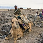 Inhabitants of Danakil Depression desert