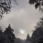 Winter landscape by British artist David Wyatt
