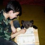 Helping with homework Ilzit, the bear