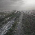 Autumn road. Photographer Nikolay Titov