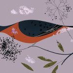 A bird eating berries. Beautiful Illustration from The Golden Book of Biology by American modernist artist Charley Harper