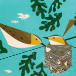 A couple of birds on blue background. Illustration from The Golden Book of Biology by American modernist artist Charley Harper
