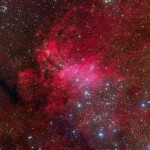 The Prawn Nebula