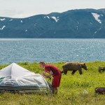 The photographer takes his position in a tent to take pictures of bears