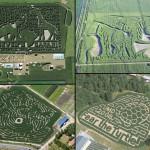 Corn field labyrinths