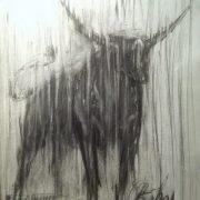 Taurus. paper, pencil. 2016