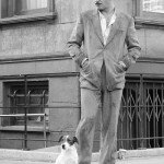 Hollywood actor Uggie