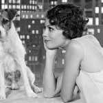 """The Artist"", Uggie as 'Jack'"