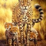 Jaguar family. Painting by Italian artist Tina Bruno