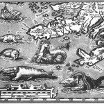 Map with the monsters in the seas around Iceland in the early 16th century
