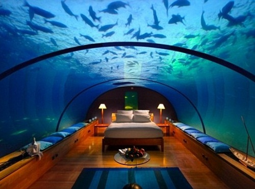 The Hilton Hotel in the Maldives offers luxury underwater suites where you can chill with the fishes while things get scary on dry land