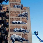 Rhinoceros, Elephants and giraffes decorate the wall of the House in Johannesburg, in South Africa. Roa painting beautiful realistic wildlife graffiti