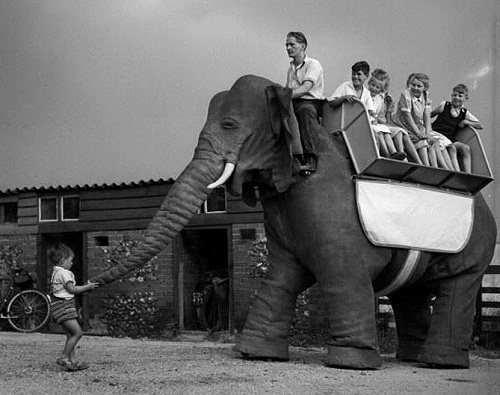Mechanical Elephant by Frank Stuart. Thraxted, Essex. 29th July 1950.