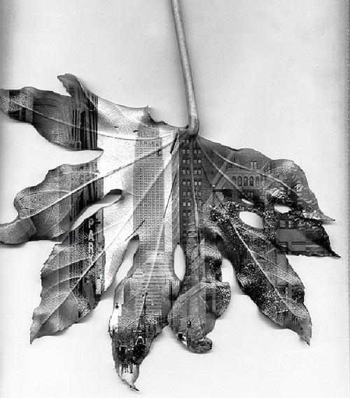 New York 2012 by Matthew Richards