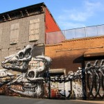 Skeletons of prehistoric dinosaurs decorate the walls of a building in Brooklyn, between Morgan and Bogart street
