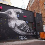 Beautiful bird decorates the construction. Street art by Belgian graffiti artist Roa