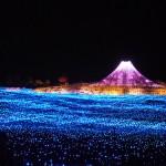 Picturesque light installation 'Winter light' in Japan