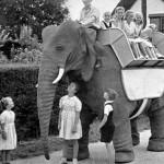 cute mechanical elephant