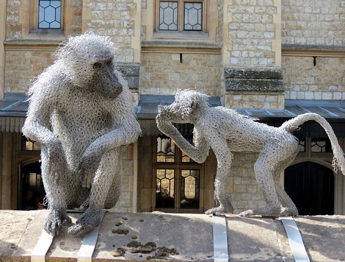 Baboons (chicken wire sculpture). Realistic 3D animal sculpture by British artist Kendra Haste