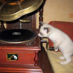 gramophone with a His master's voice label