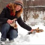 Siberian scientist Irina Mukhamedshina with her tamed fox Nyuta