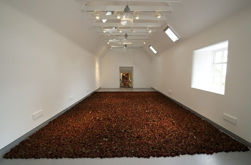 Installation of beautiful Holland roses by Scottish artist Anya Gallaccio