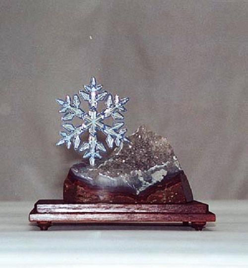 award named after Tatyana Snezhina - Silver snowflake