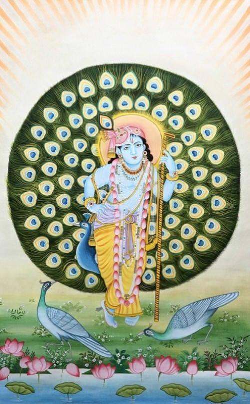 Lord Krishna in the Backdrop of Peacock Features Aureole