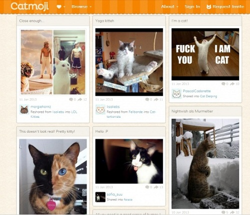 first social network for cats