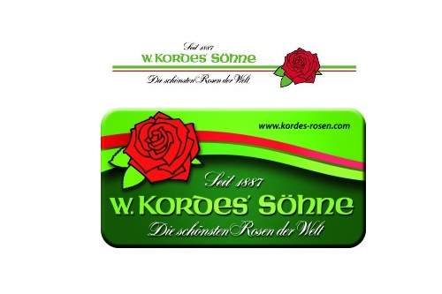 W. Kordes' Sohne Rosenschulen GmbH & Co KG (Wilhelm Kordes & Sons) – a company engaged in breeding and production of roses