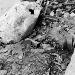 A crushed globe and a bust of Hitler amid rubble outside the ruined Reich Chancellery. This photo was not originally published in LIFE