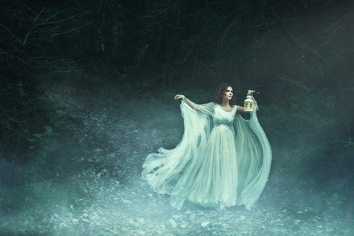 magic forest. Photographer Elena Alfyorova, Russia