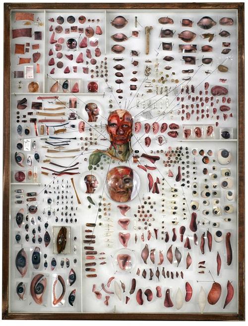 Michael Mapes anatomical portraits