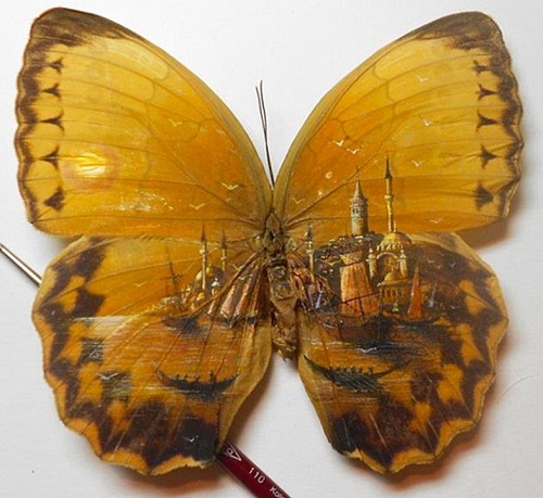 Incredible painting on butterfly wings by Hasan Kale