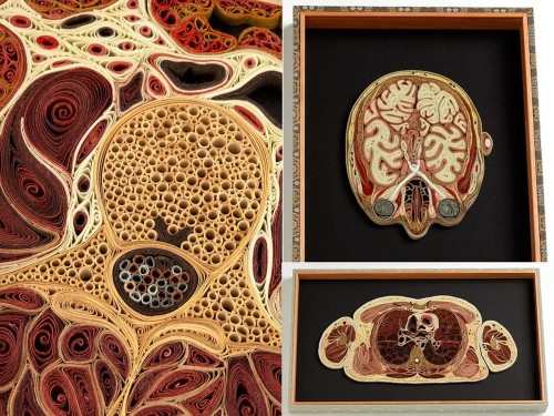 Human body parts by American artist Lisa Nilsson