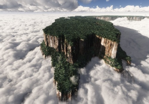 Rising above the surrounding forest, tepuis are almost vertical walls, and many of them rise to more than 1,000 m above the jungle
