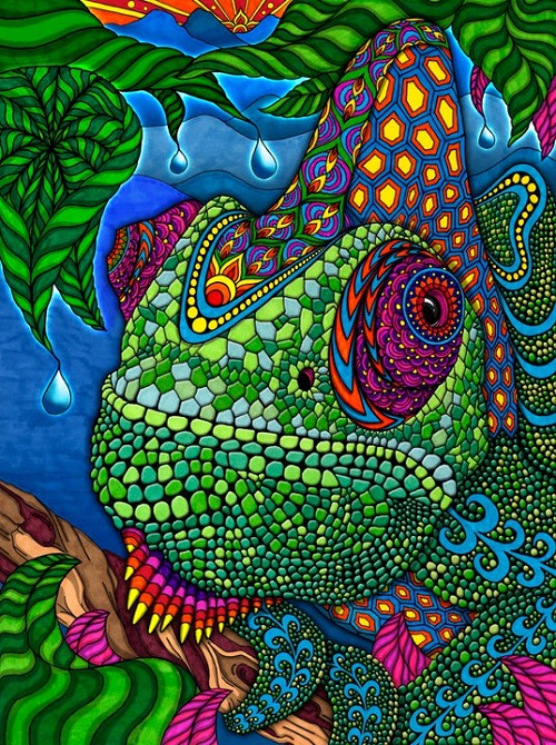 Kaleidoscope of colors by Phil Lewis. chameleon