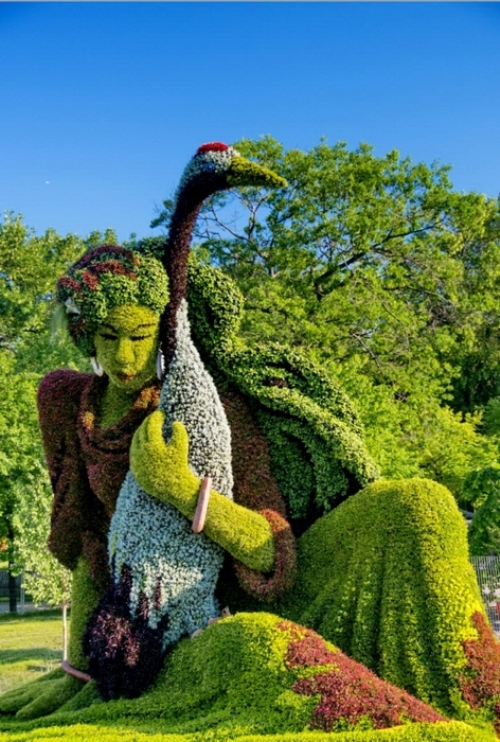 Montreal 2013 competition of horticultural art
