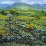 Near Clonbur-County Mayo-Ireland