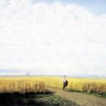 The Steppe. Yaroslavl Art Museum