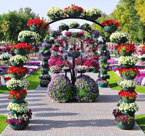 Al Ain Paradise largest flower park in the world