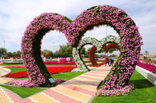 The largest flower park in the world al ain paradise in the united