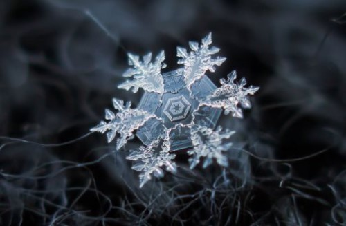Snowflakes by Russian photographer Alexey Kljatov