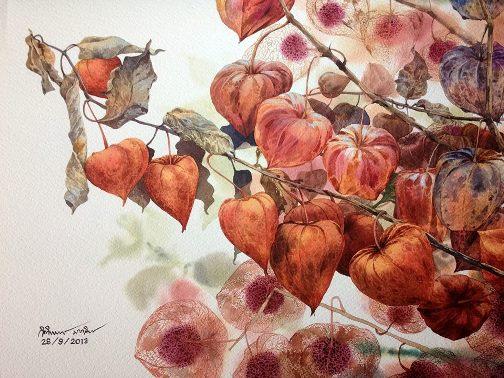 Ti Watercolor