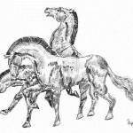Detailed drawings by Serbian graphic artist Dusan Krtolica, 10 years old